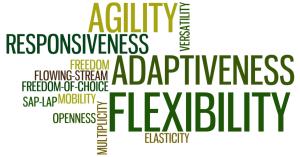 Flexibility-Adaptability